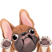 French Bulldog Mini Decal