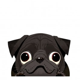 Black Pug Car Sticker Decal