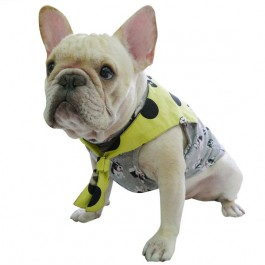 Accessory double look sailor collar with camouflage and neon yellow for French bulldog or pug use