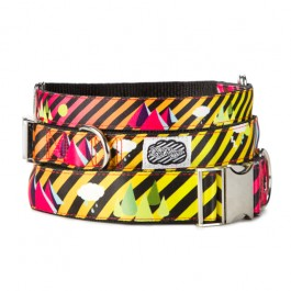 Electric 80s Dog Collar