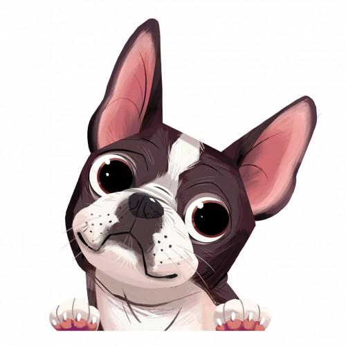 Boston Terrier Sticker Decal
