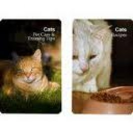 Double Deck of Cards-Cat Series