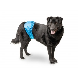 Mr. Peepers Male Wraps Belly Bands for Dogs