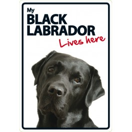 Black Labrador Lives Here A5 Plastic Sign