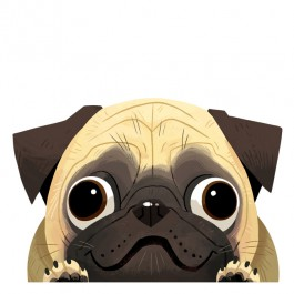 Pug Car Window Decal Sticker